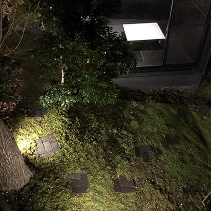 リビング東の中庭。奥はガラス貼の茶室